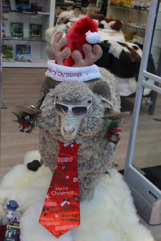NZ Weihnachtsdeko