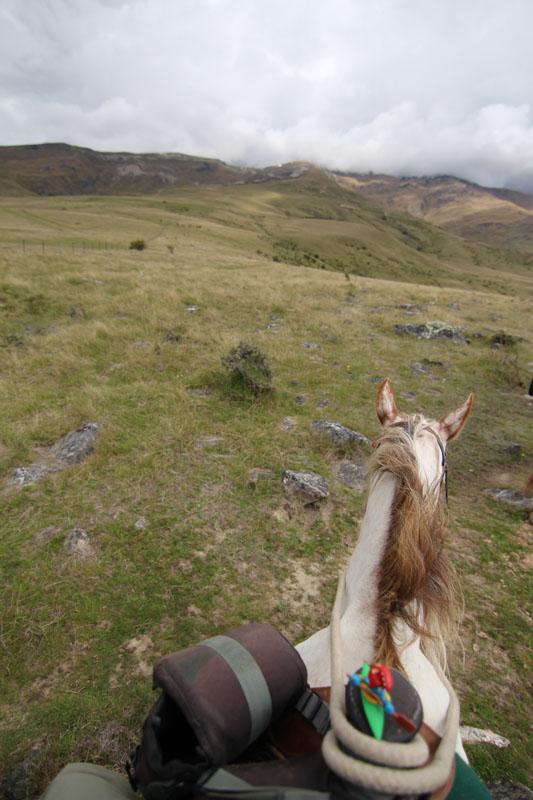 Kajaker auf dem Pferd