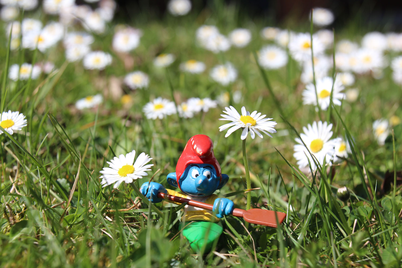 Kajaker zu Hause im Frühling