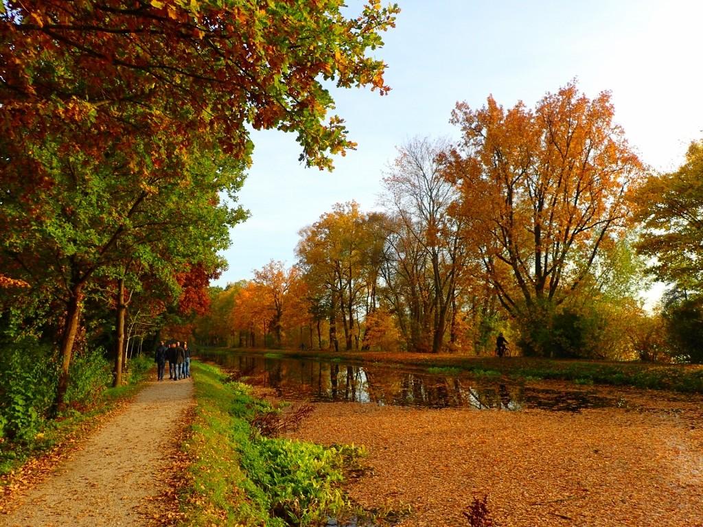 "Goldener Herbst am ""Alten Kanal"""